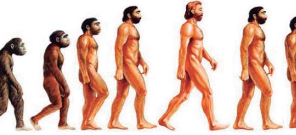 Re – Evolución