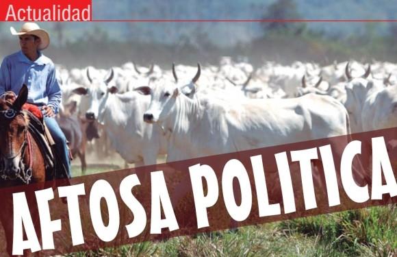 ACTUALIDAD | Aftosa Política