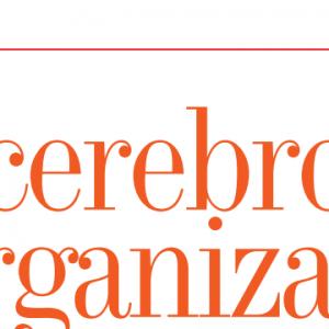 EMPRESARIALES | EL CEREBRO DE LA ORGANIZACIÓN