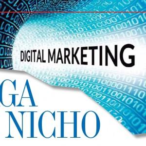 MERCADEO | Digital Marketing, Haga su Nicho
