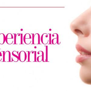MERCADEO | Experiencia Sensorial