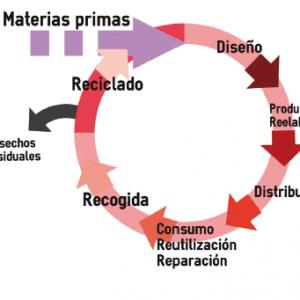 ECONOMÍA | ECONOMÍA CIRCULAR