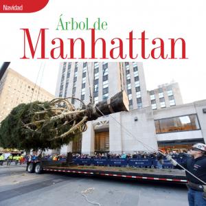 NAVIDAD | ÁRBOL DE MANHATTAN